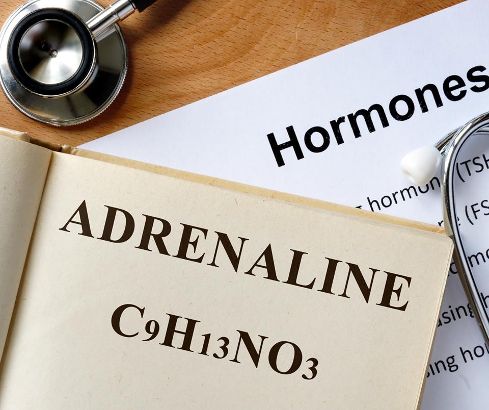 Adrenalina-hormony-Polska-Szkoła-Rodzenia-w-UK